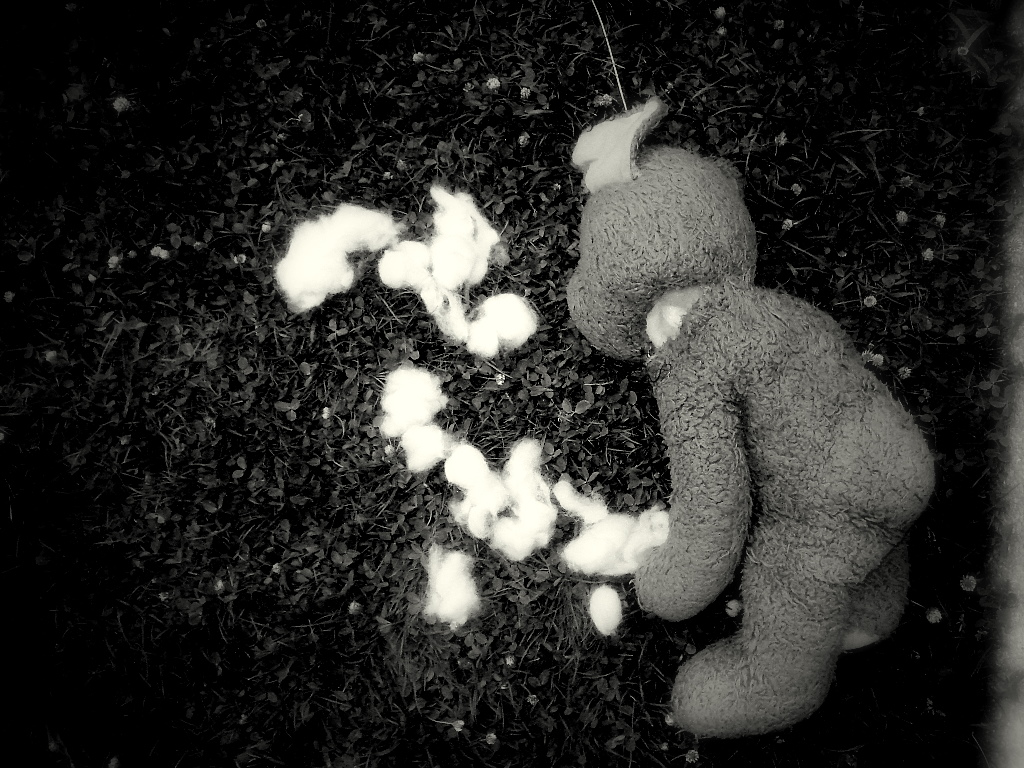 Murder blog - stuffed teddy on the ground with some stuffing pulled out