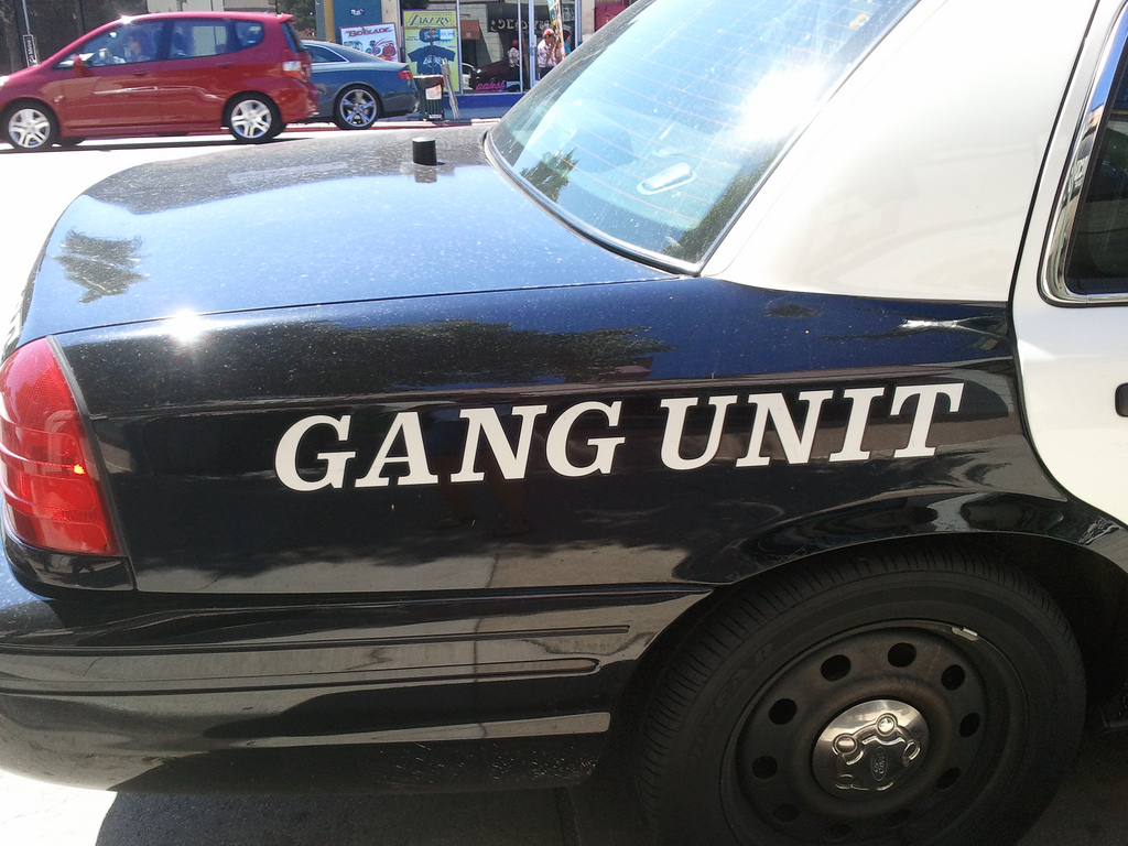 Gang blog - rear of a police car