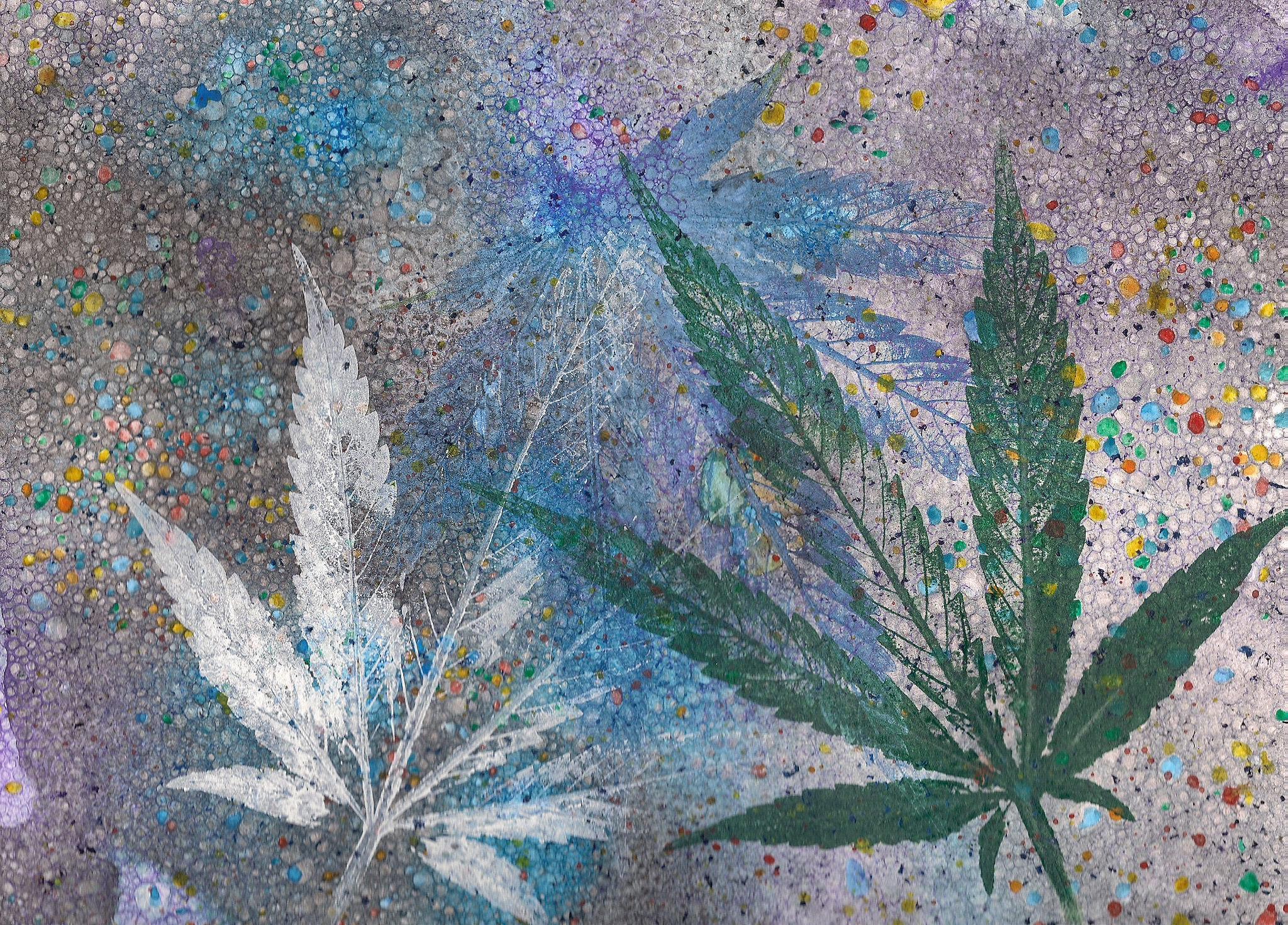 medical marijuana cards in az